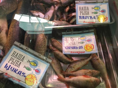 Наша рыба